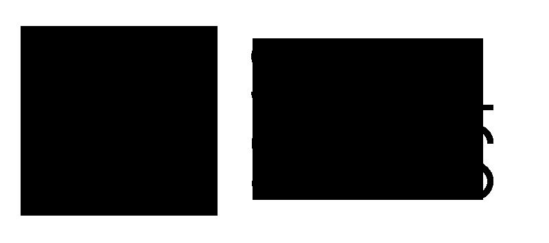 SocialSkills logo noir